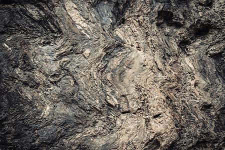 petrified: The Petrified Wood Texture Background, Petrified wood Stock Photo