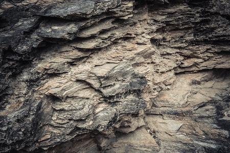 petrified fossil: The Petrified Wood Texture Background, Petrified wood Stock Photo