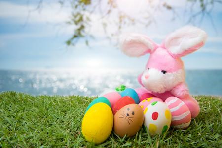 Bunny Eggs Grass On the beach, the sea, beautiful summer morning. Stock Photo