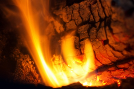 fire in the fireplace, close-up of flaming logs photo