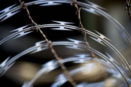 razorwire: A detailed view of razorwire. Stock Photo