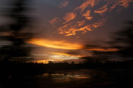 silhoutted: Silhoutted trees blue by with a colorful sunrise photographed while driving. Stock Photo