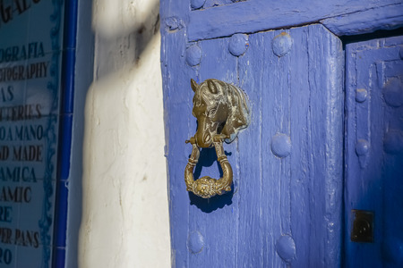 knocker: horse head door knocker