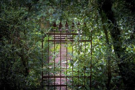 puertas de hierro: olvidados, puertas antiguas de hierro, cubiertos de arbustos, en el antiguo parque Foto de archivo