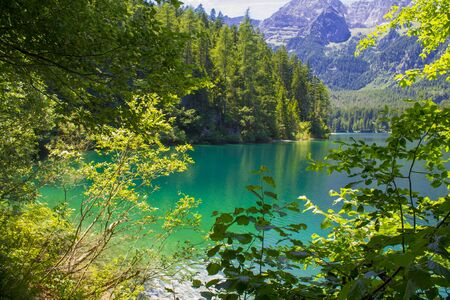 springl view of the Tovel Lake, Trentino Italy.