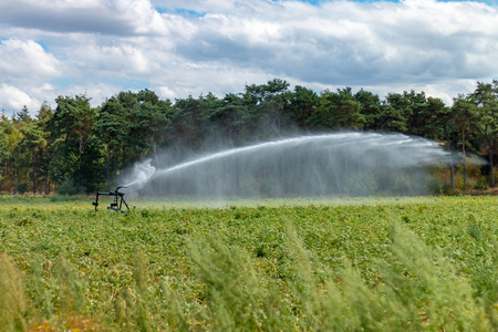 Farmers fight with water sprinklers against the drought on their land
