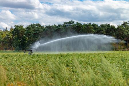 Les agriculteurs se battent avec des arroseurs d'eau contre la sécheresse sur leurs terres