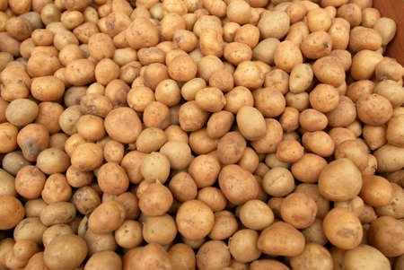 stock pile of potatoe Stock Photo - 17081634