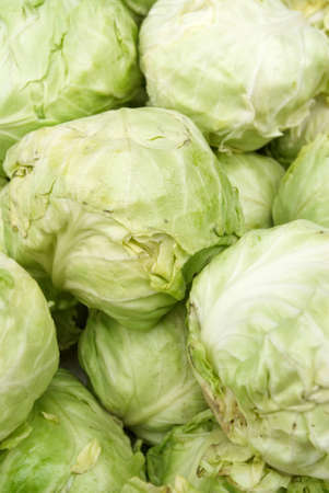 stock pile of cabbage Stock Photo - 17081632
