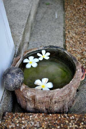 railey: secchio d'acqua e fiori
