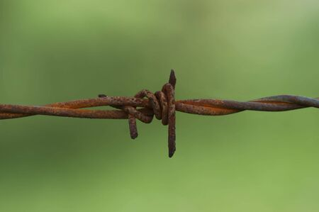 photographies: Barbed Wire Fence, Close up