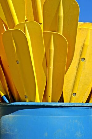rafter: Raft Paddles Stock Photo