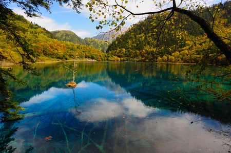 Forest and Lake in Jiuzhaigou, Sichuan province of China