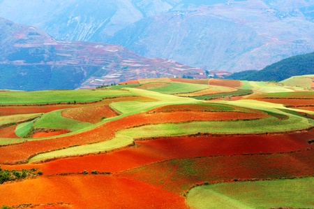china landscape: Beautiful fields landscapes in Yunnan Province, southwest of China