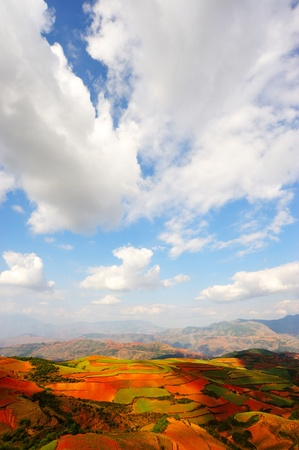 yunnan: Field landscapes in Yunnan Province, southwest of China