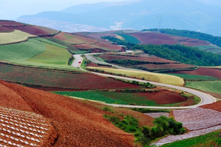 yunnan: Field landscape of red land in Yunnan Province, China Stock Photo