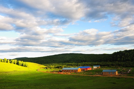 Grassland in Hulun Buir League of Inner-Mongolia, China photo