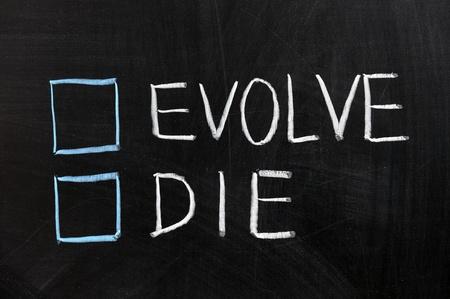 Chalk drawing - Evolve or die
