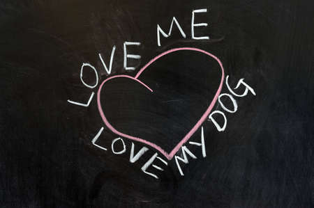 Chalk drawing - Love me, love my dog photo