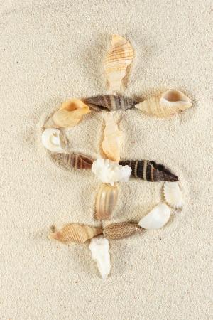sand dollar: Dollar sign made of seashells group on the sand Stock Photo