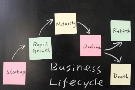 ciclo de vida: Concepto de negocio del ciclo de vida en la pizarra