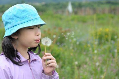 Asian kid blowing dandelions in the field photo