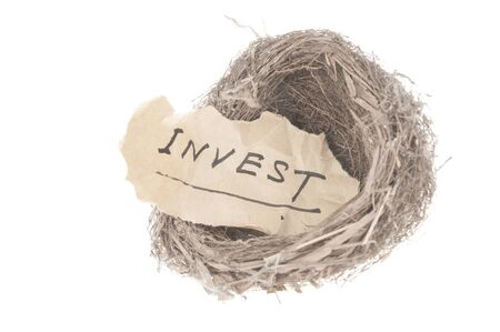money metaphor: Invest concept word in bird nest