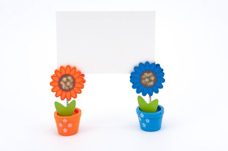 Blank white paper on clips of two sun flower pots Stock Photo - 17385299