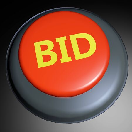 bid: Oferta palabra en el bot�n 3D prestados Foto de archivo