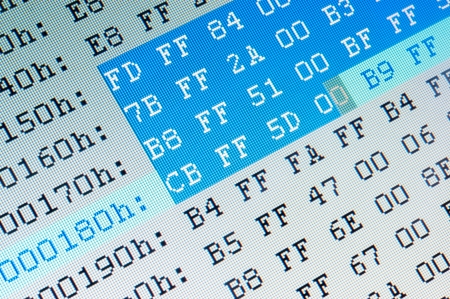 Hexadecimal data close up on computer LCD monitor