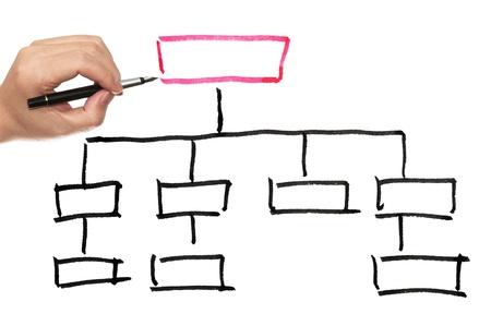Organization chart drawn on the white paper