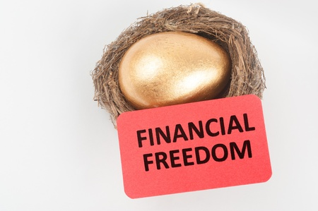 Financial freedom concept with golden egg in the bird nest photo