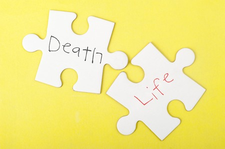death: Death and Life words written on two pieces of jigsaw puzzle