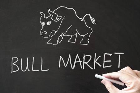 Bull market words written on the blackboard using chalk