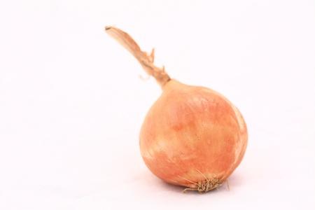 Onion on a white background Stock Photo - 13126547