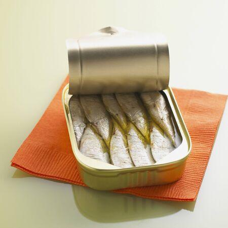 Sardines and Napkin