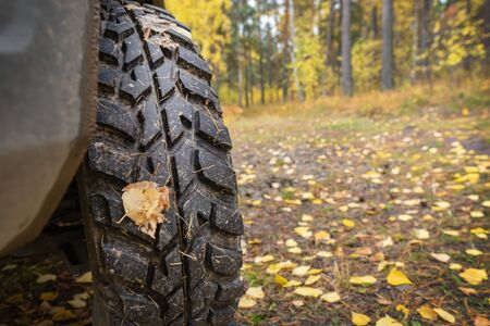 mud tires, autumn background, travel. close up, copy space