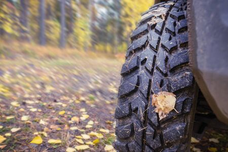 mud tires, blurred autumn background, travel. close up, copy space Stock Photo