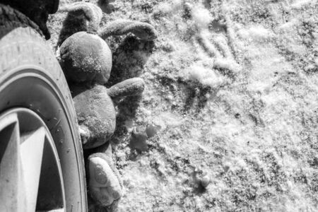 childrens accident on a winter road, Bunny rabbit toy. Death on the road, carelessness and danger. Attention and caution. roadkill winter, Concept black and white photo