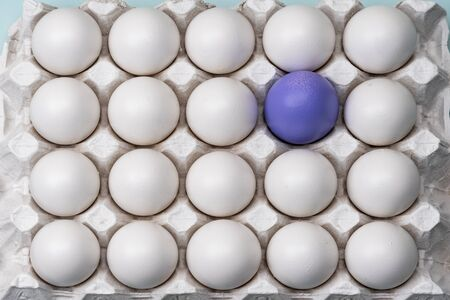 one purple blue egg among many white eggs. The view from the top box of the cell. bright difference, concept. symbol of individuality. concept for Easter. the makings of a leader 版權商用圖片 - 141779634