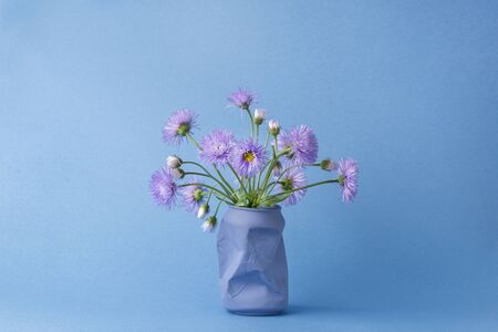 a bouquet of purple Daisy flowers in a vase from under a can of Cola on a blue background Stockfoto