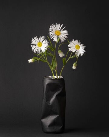 three white field daisies in a black bowl from under a can of coke. simple and dark contrasting still life in minimalism style, vertical photo