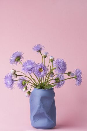bright purple chamomile wildflowers on a pink background. summer spring simple bouquet. vertical photo