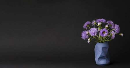 a bright bouquet of purple daisies on a black background. simple spring and summer history, contrasting still life, interior decoration of the kitchen, copy space