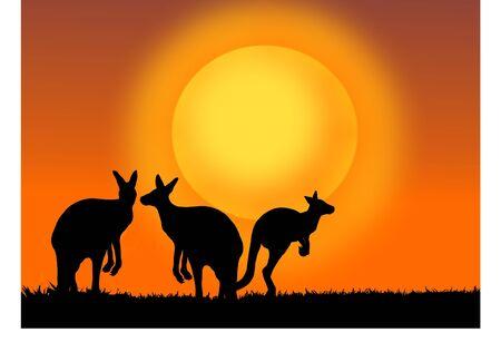 夕日とカンガルー