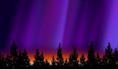 northern light: Northern lights