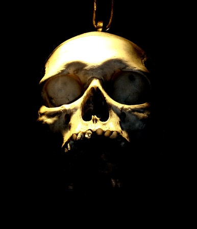 Scary scull with black background Stock Photo