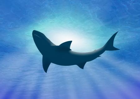 深い水の鮫の下で