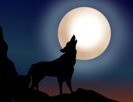 black wolf: Wolf howling over the full moon