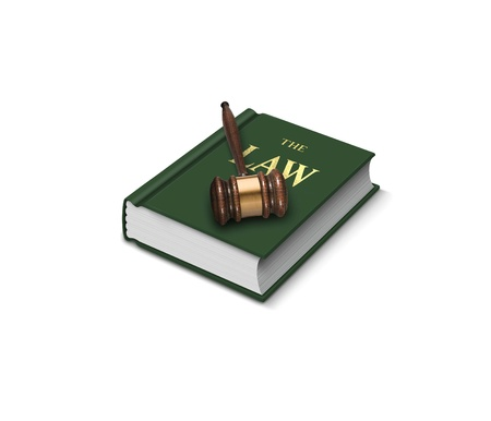 parliamentary: Book of law and gavel